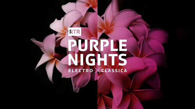 Purple Nights