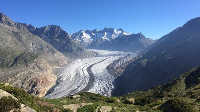 Blick auf den Aletschgletscher im Juni