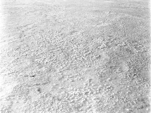 Schwarzweiss-Fotografie von Ester Vonplon, die eine Schneedecke zeigt.