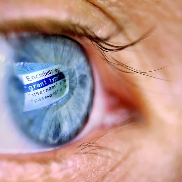 Ein Computer spiegelt sich in einer Iris.