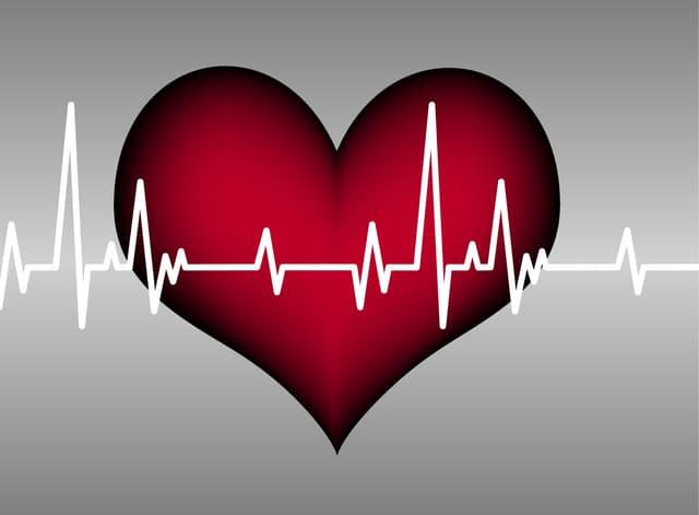 Illustration: Rotes Herz und Kardiogramm