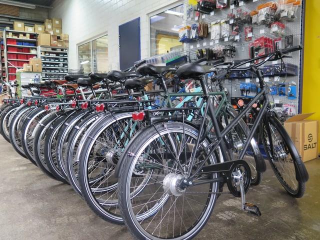 Diverse Fahrräder sind nebeneinander aufgereiht.