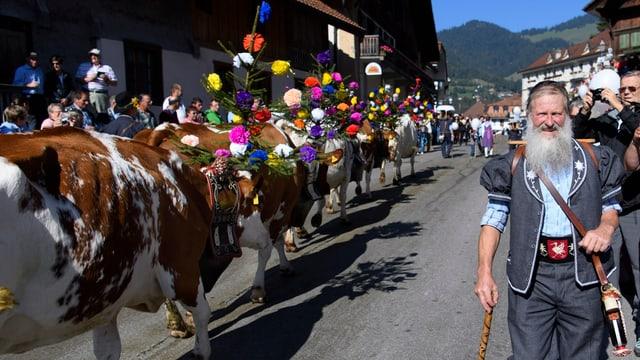 Ein Bauer geht mit geschmückten Kühen über eine Strasse