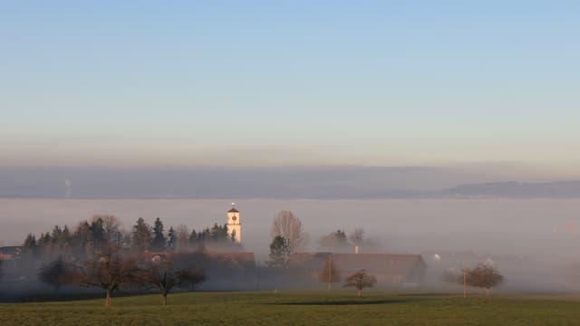 In Güttingen war es zwar auch sonniger als sonst im Dezember, Nebel verhinderte aber einen neuen Rekord.