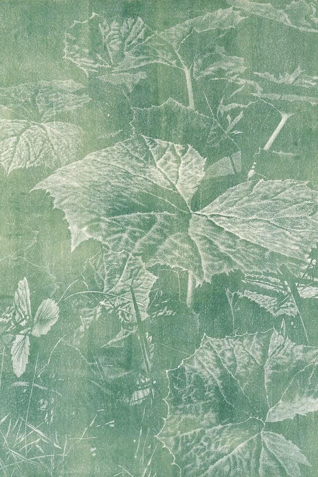 Hozschnitt, Abzug auf Japanpapier in grün.