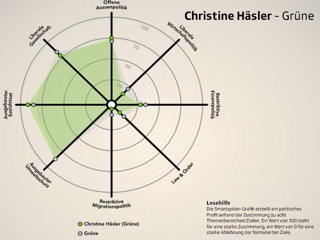 Smartspider von Christine Häsler, Grüne.