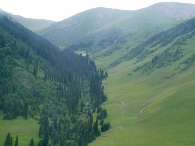 Wanderpfade im Gebirge