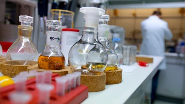 Eine Reihe Laborgläser mit flüssigem Inhalt