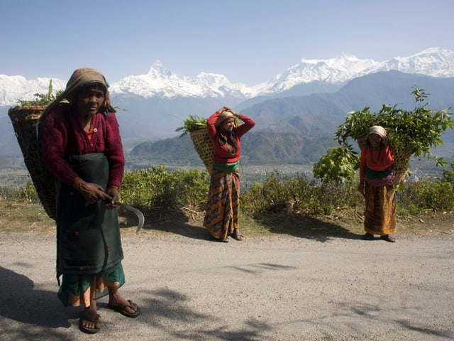 Drei Frauen tragen landwirtschaftliche Produkte auf dem Rücken vor dem Himalaya-Panorama