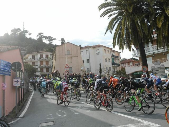 Der Aufstieg zur Cipressa rund 20 Kilometer vor dem Ziel, hier eine Aufnahme von 2015.