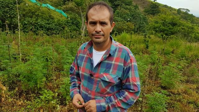 Cannabis-Bauer  in Kolumbien
