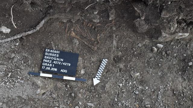 Il skelet ch'è vegnì chattà a Savognin.