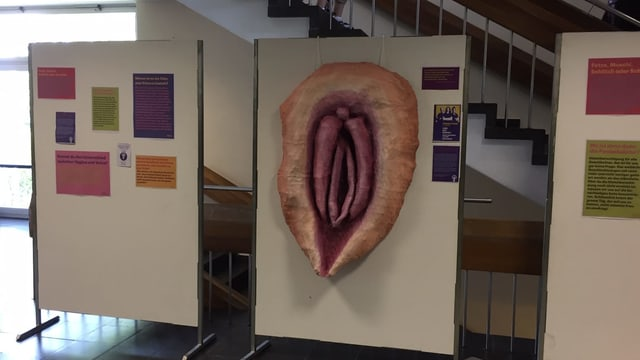 selbstgebastelte Vulva von Kantonsschülerinnen in Wetzikon