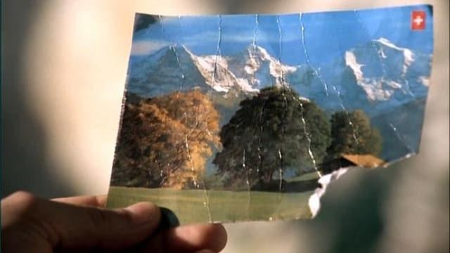 Ansichtskarte mit Bäumen und Schweizer Bergen.