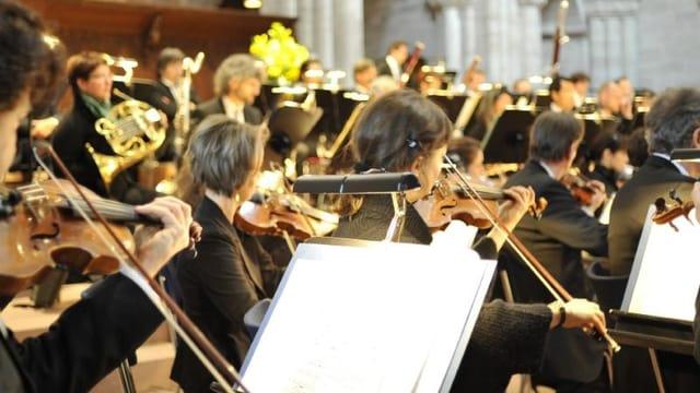 Musiker im Konzert