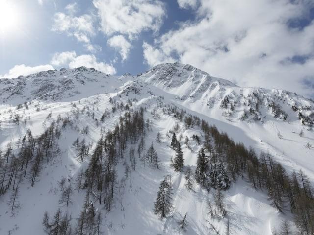 Ein schneebedeckter Hang.