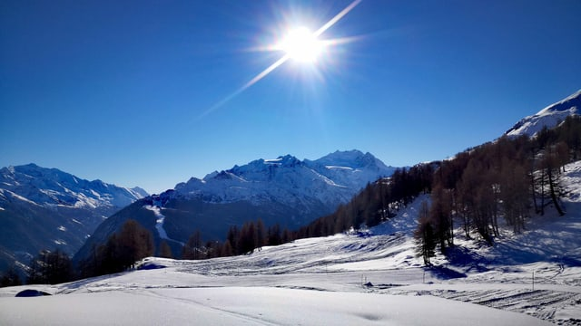 Am Sonntag war es im Wallis nur wolkenlos, und so gab es den perfekten Blick von der Moosalp Richtung Mischabelgruppe.