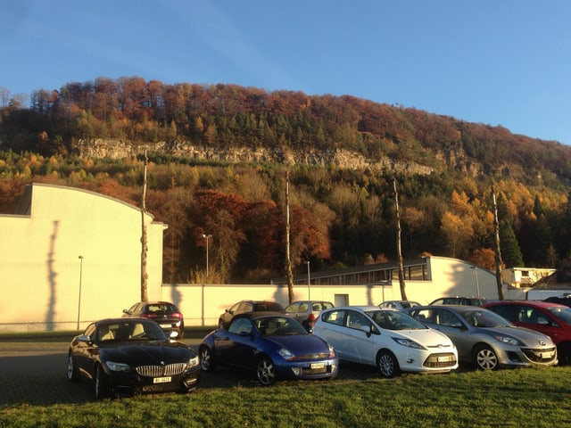 Im Vordergrund mehrere Autos. Im Hintergrund ein Wald mit der Deponiewand.