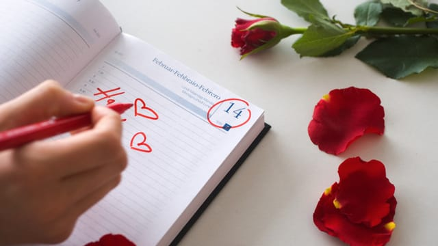 Rose mit Kalender mit 14. Februar