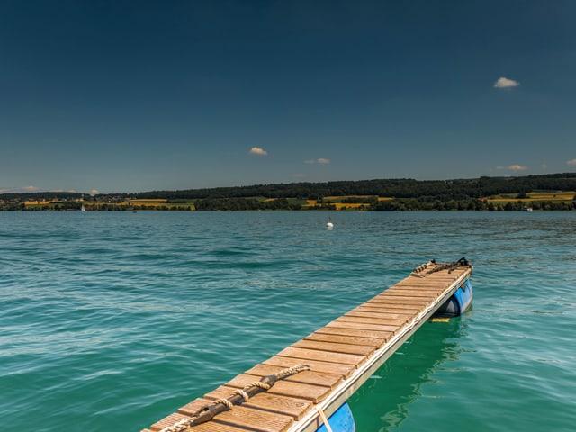 Holzsteg im See.