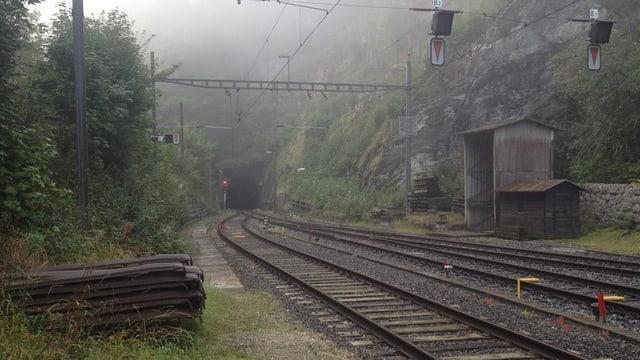 Portal des Weissensteintunnels.