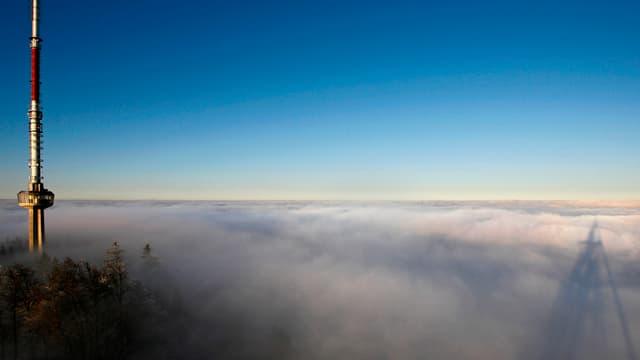 Üetliberg im Nebel