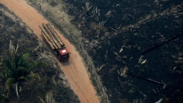 Lastwagen mit Holz im Amazonas