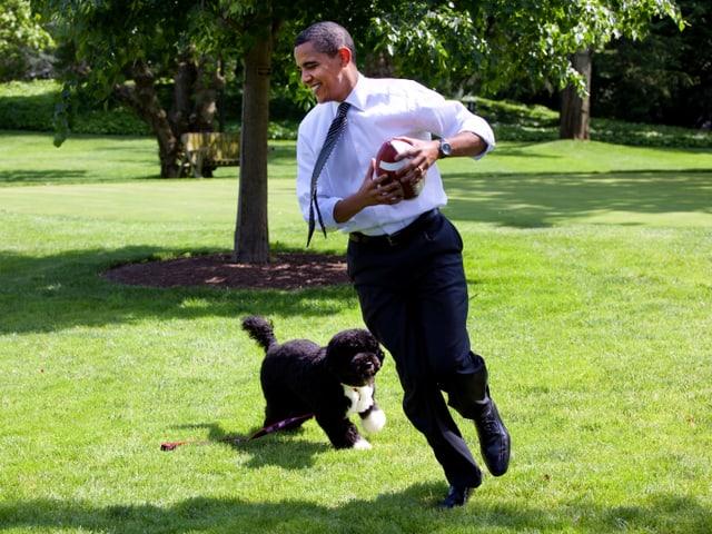 Obama hält einen Baseball in der Hand und spielt mit seinem Hund im Garten.