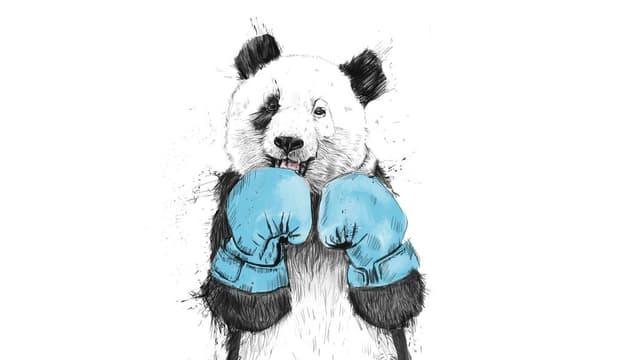 Du möchtest auch boxen?