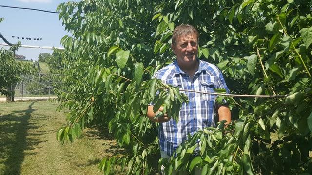 Ernst Lüthi steht imgeben von Kirschbäumen ohne Kirschen.