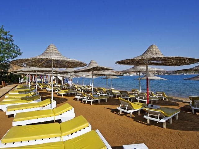 An einem Strand stehen leere, gelbe Liegestühle.