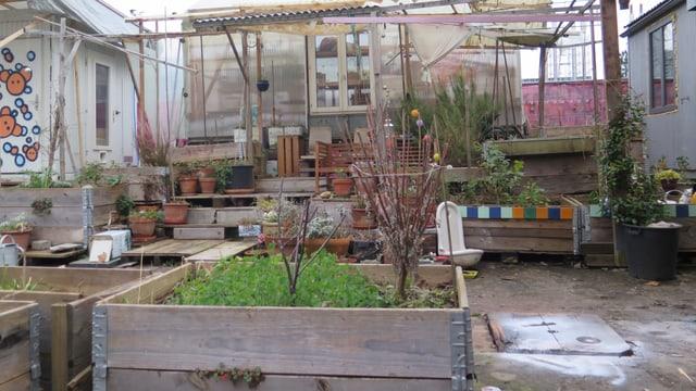 Garten auf dem Gelände des Zirkus Knopf