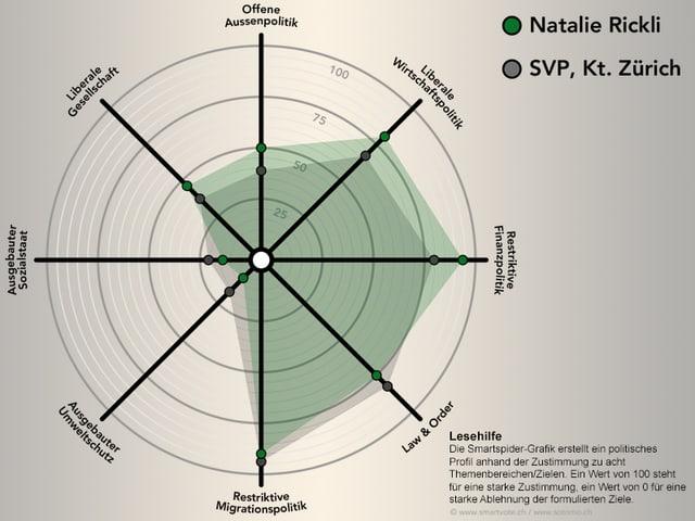 smartspider-grafik