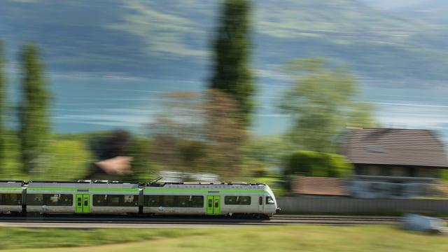 Ein grün-silberner BLS-Regionalzug fährt dem Seeufer entlang.