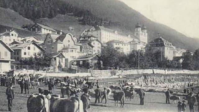 Ina fiera da biestga a Mustér sin l'areal da la staziun enturn il 1910.
