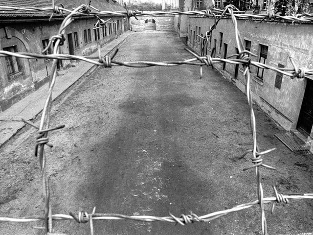 Blick durch einen Stacheldrahtzaun auf das KZ Theresienstadt.