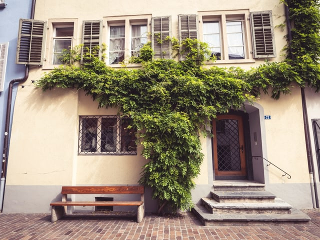 Haus mit Blätter an der Wand