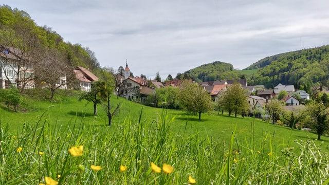 Grüne Landschaft im Schwarzbubenland
