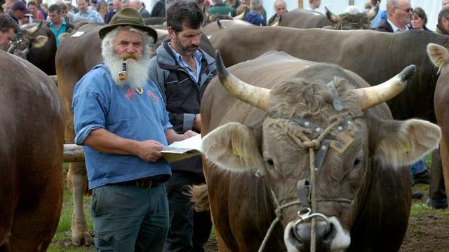 Bauern fachsimpeln am traditionellen Stierenmarkt in Zug und treiben Handel.