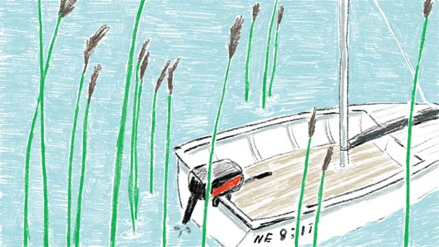 Zeichnung von einem Boot im Schilf.