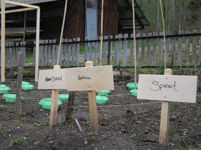 Gemüsegarten mit beschrifteten Schildern.