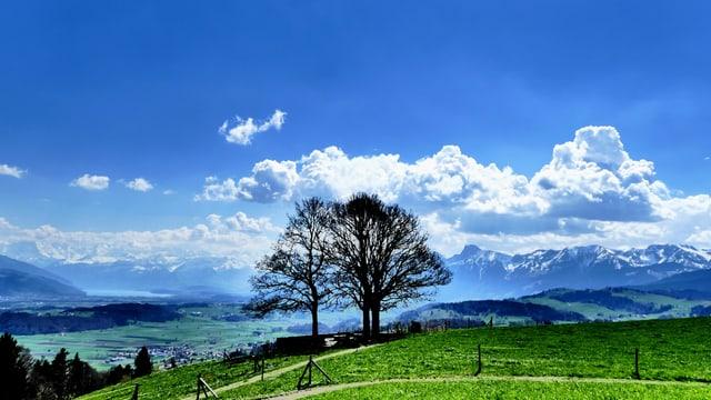 Blick von der Bütschelegg Richtung Alpen wo sich Quellwolken bilden.