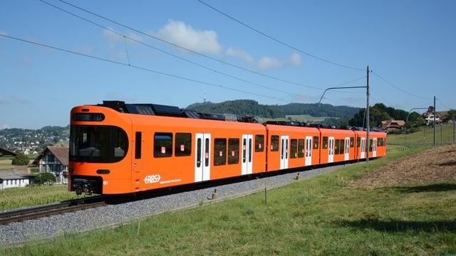 Zug auf der Strecke