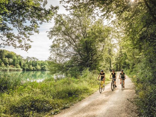 Trais ciclists sin ina via natirala sper in flum.