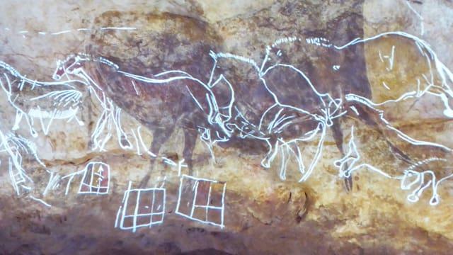 Weiss eingefärbte Ritzbilder von Pferden auf einer Felswand.