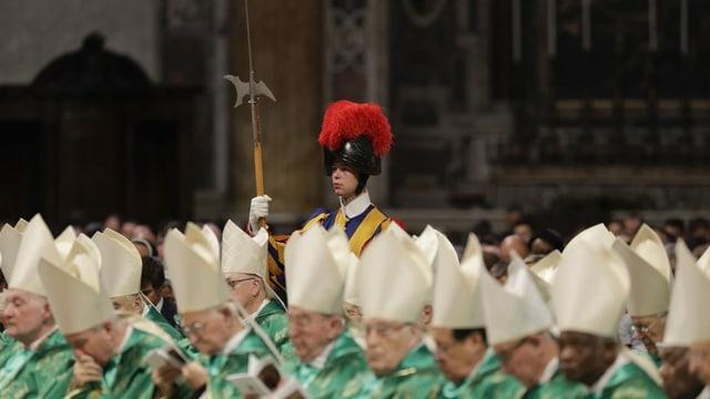 Guardia svizra tranter la sinoda da l'Amazonas