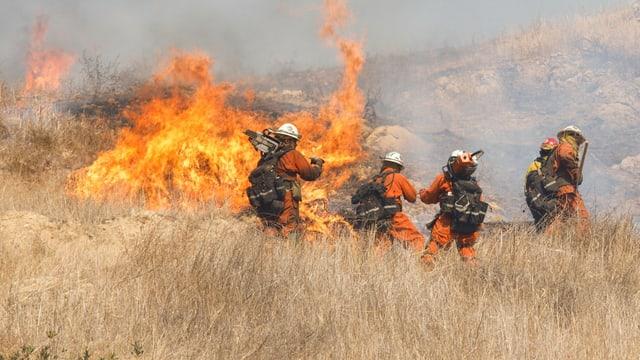 Auf trockener Unterlage: Feuerwehrmänner im Einsatz.