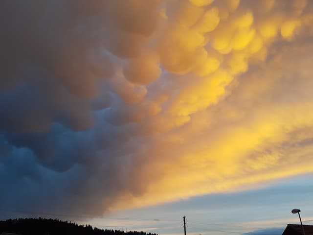 Bauchige Mammatuswolken über dem Emmental. Die Wolken sind von der Abendsonne gelb-orange angeschienen.