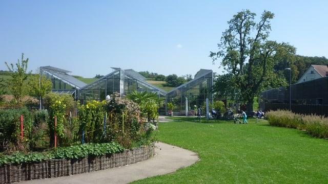 Ein Park mit einem Weg zwischen einer grünen Wiese und einem Blumenbeet.