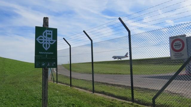 Naturschutzgebiet neben Flughafengelände